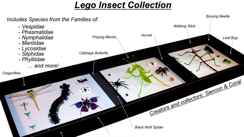 MOC – LEGO insects collection