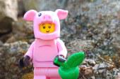 Piggy Guy – Minifigures