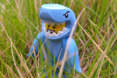 Shark Suit Guy – Minifigures