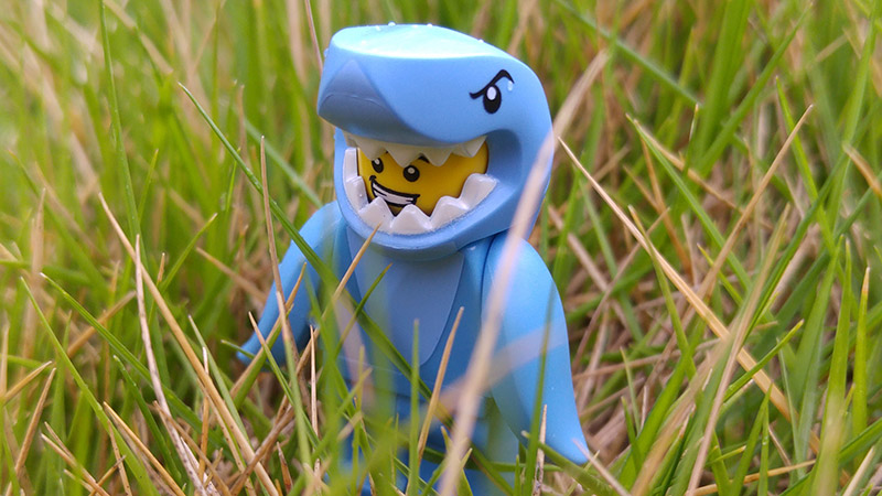 Shark Suit Guy – Minifigures