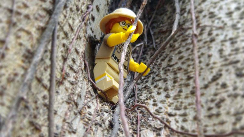Paleontologist – Minifigures