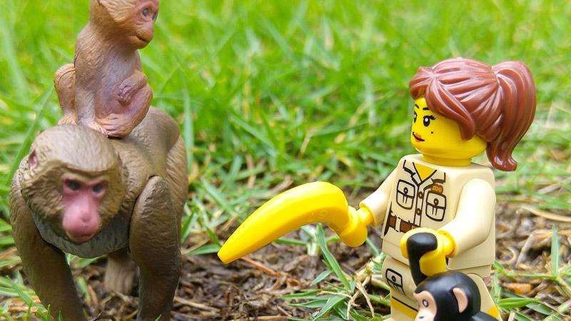Zookeeper | LEGO Minifigures